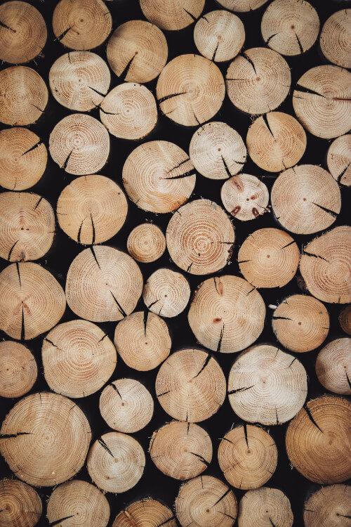 Drewno w drzwiach Martom